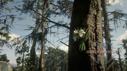 Dame de L'orchidée de nuit dans RDR 2