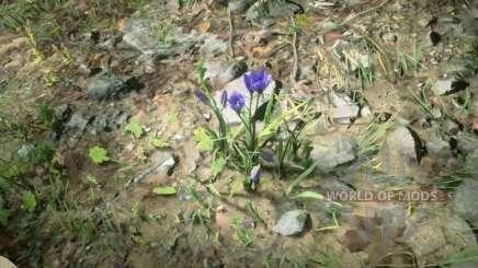 Perce-neige violette dans RDR 2