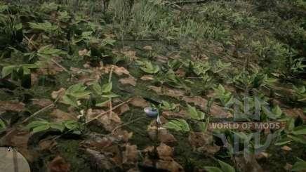 Orchidée d'oeuf de moineau dans RDR 2