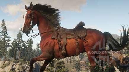 Comment appeler un cheval dans RDR 2 s'il est loin