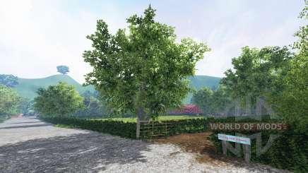 Folley hill farm pour Farming Simulator 2015