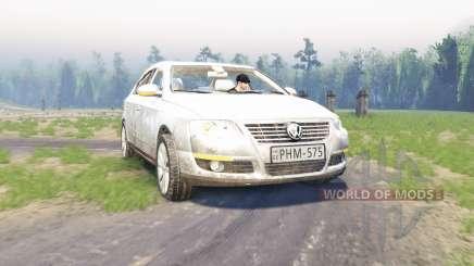 Volkswagen Passat (B6) pour Spin Tires