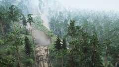 Sibérien De La Forêt 3