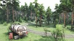 Spaziergang im Wald für Spin Tires