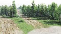 Promenade dans les bois pour Spin Tires