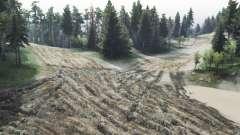 Les sentiers de la forêt v2.0 pour Spin Tires