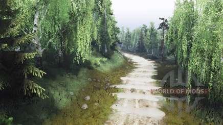 Wald und Steinbruch v4.0 für Spin Tires