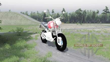 BMW R1100R pour Spin Tires