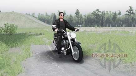 Harley-Davidson FLSTF Fat Boy pour Spin Tires