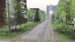 Développeur Victor Barykin 5