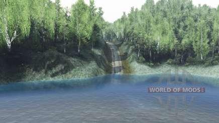 Russischen Wald für Spin Tires