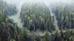 Forêt de pins 2 v1.1