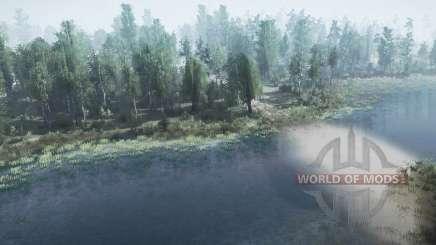 Forêt du lac pour MudRunner
