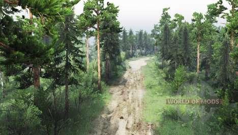 Réservé la forêt pour Spin Tires