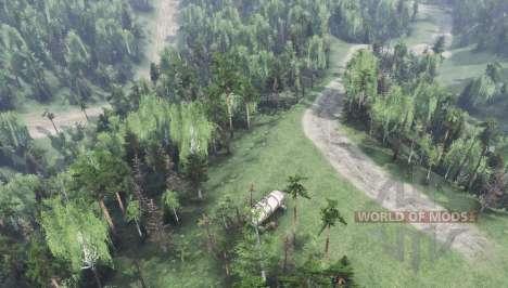 Arménien de la forêt v2.0 pour Spin Tires