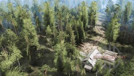 De la forêt 2 pour Spintires MudRunner