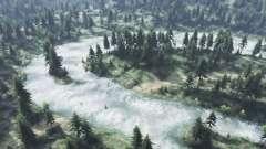 Sumpf-Wälder