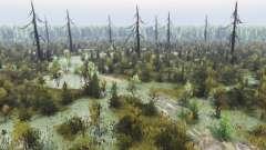 Spooky de la forêt 2