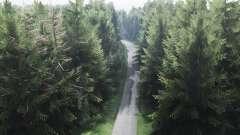 Forêt trophée pour Spin Tires