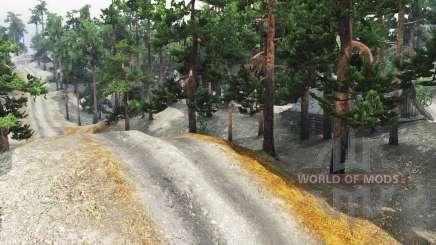 Pine trails für Spin Tires