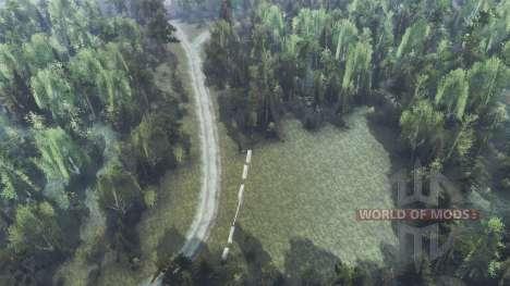 La forêt dense pour Spin Tires