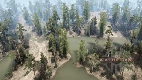 Sumpfland für Spintires MudRunner