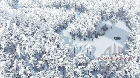 Winter im Wald für Spin Tires