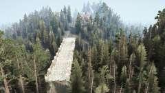 Murmure de la forêt