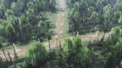 Forêt sèche de la v2.0 pour Spin Tires