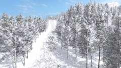 Arctic Logging