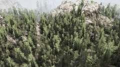 WoodsLight für MudRunner
