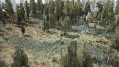 Delta Trails