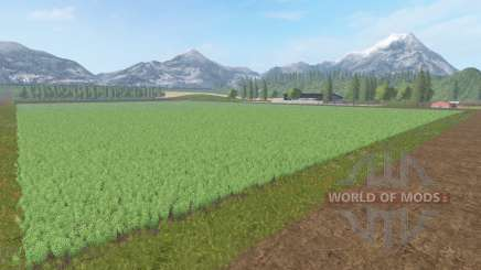 Collines d'or v1.1 pour Farming Simulator 2017